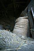 Holey Bag