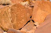 Prehistoric rock engravings at Twyfelfontein, Namibia