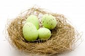 Green Eastereggs in Easter Basket