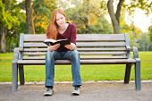 A Woman On A Bench Reading A Bible