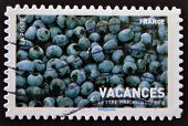 A stamp printed in France showing a ripe blueberries vacation pictures