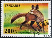 A stamp printed in Tanzania shows Bat Eared Fox Otocyon megalotis