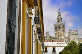 The Giralda of Seville and typical Andalusian houses