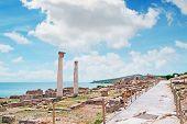 Columns In Tharros