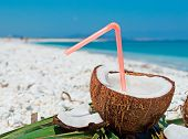 Drinking Coconut