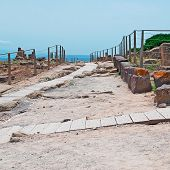 Wooden Path In Tharros