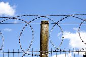Coiled Razor Sharp Barbed Wire Against Blue Dsky