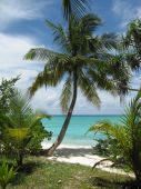 pic of kuramathi  - Maldives - JPG