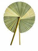 Palm-leaf fan