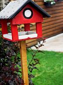 Red Bird House
