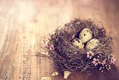 bird's nest with eggs and tiny pink flowers on a wooden table