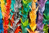 Origami Paper Cranes At Hiroshima, Japan