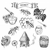 stock photo of beehives  - honey - JPG