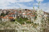 Krushevo view in spring