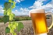 Постер, плакат: Beer Glass With Landscape
