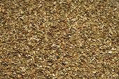 Spice - dried Basil. Close-up.