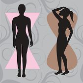 image of body shapes  - Vector Illustration of female body shape hourglass - JPG