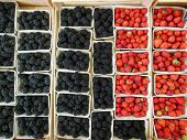 Berries at Market