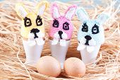 Rabbit Egg Warmers