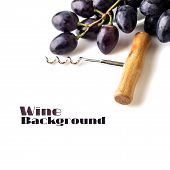 Cluster Of Dark Blue Grapes With Corkscrew Isolated On White Background.