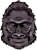 Illustration Featuring a Gorilla