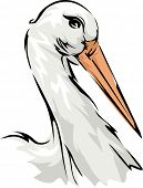 Illustration Featuring a Stork