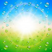 Sunny summer background, with water drops, vector illustration.