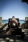 Protection, Spanish cannon pointing out to sea fortress
