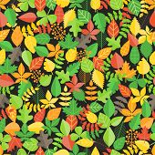 Different leaf collection seamless background