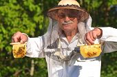 Experienced senior apiarist holding honeycombs from small wedding beehive in apiary