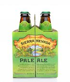 Sierra Nevada Pale Ale Six Pack