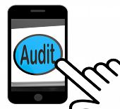 Audit Button Displays Auditor Validation Or Inspection
