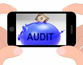 Audit Piggy Bank Displays Auditing Inspecting And Finances