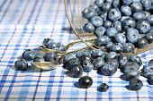 Tasty ripe blueberries in metal basket, on tablecloth background
