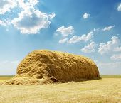 stack of straw under blue sky with clouds