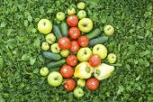 Fresh vegetables scattered on the grass. Cucumbers, tomatoes, peppers and apples.