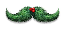 picture of pine-needle  - Winter mustache concept decoration made of pine needles and holly berries on a white background as a Christmas or new year symbol for holiday fun and humour - JPG