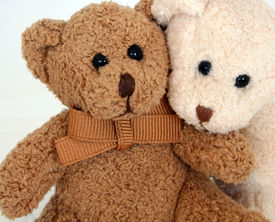 foto of stuffed animals  - Brown and white teddy bears. Children
