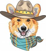 picture of corgi  - Hipster dog Pembroke Welsh corgi breed in hat and neckerchief - JPG