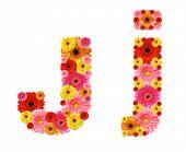 j, flower alphabet