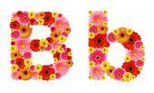 b, flower alphabet
