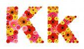 k, flower alphabet