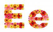 e, flower alphabet