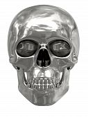 Silver Or Platinum Skull Isolated On White