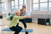 Elderly Woman Doing Exercise With Her Personal Trainer