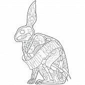 Outline rabbit