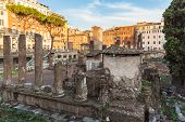 Ruins At The Square Largo Di Torre Argentina,
