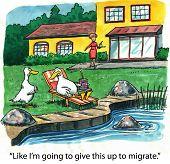 Good Duck Service
