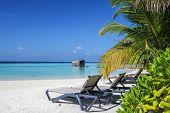 Постер, плакат: Tropical Beach Maldives