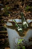 image of dump  - illegal garbage dump in the middle of the forest, glass bottles and rusty bucket ** Note: Shallow depth of field - JPG